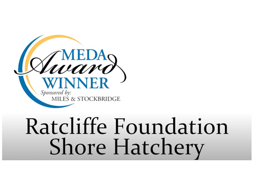 Ratcliffe Foundation Shore Hatchery MEDA Winner