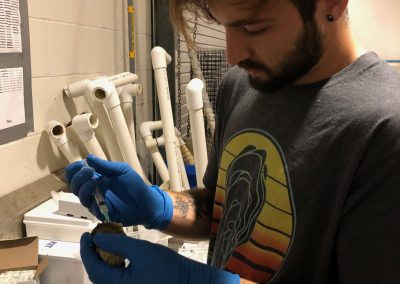 Student working in lab at SAIL